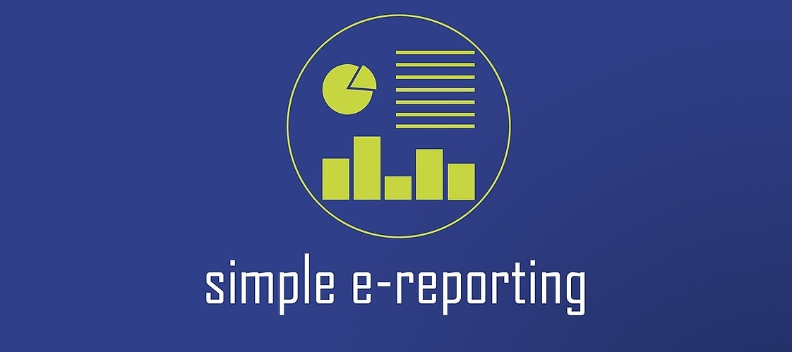 Icon - simple e-reporting